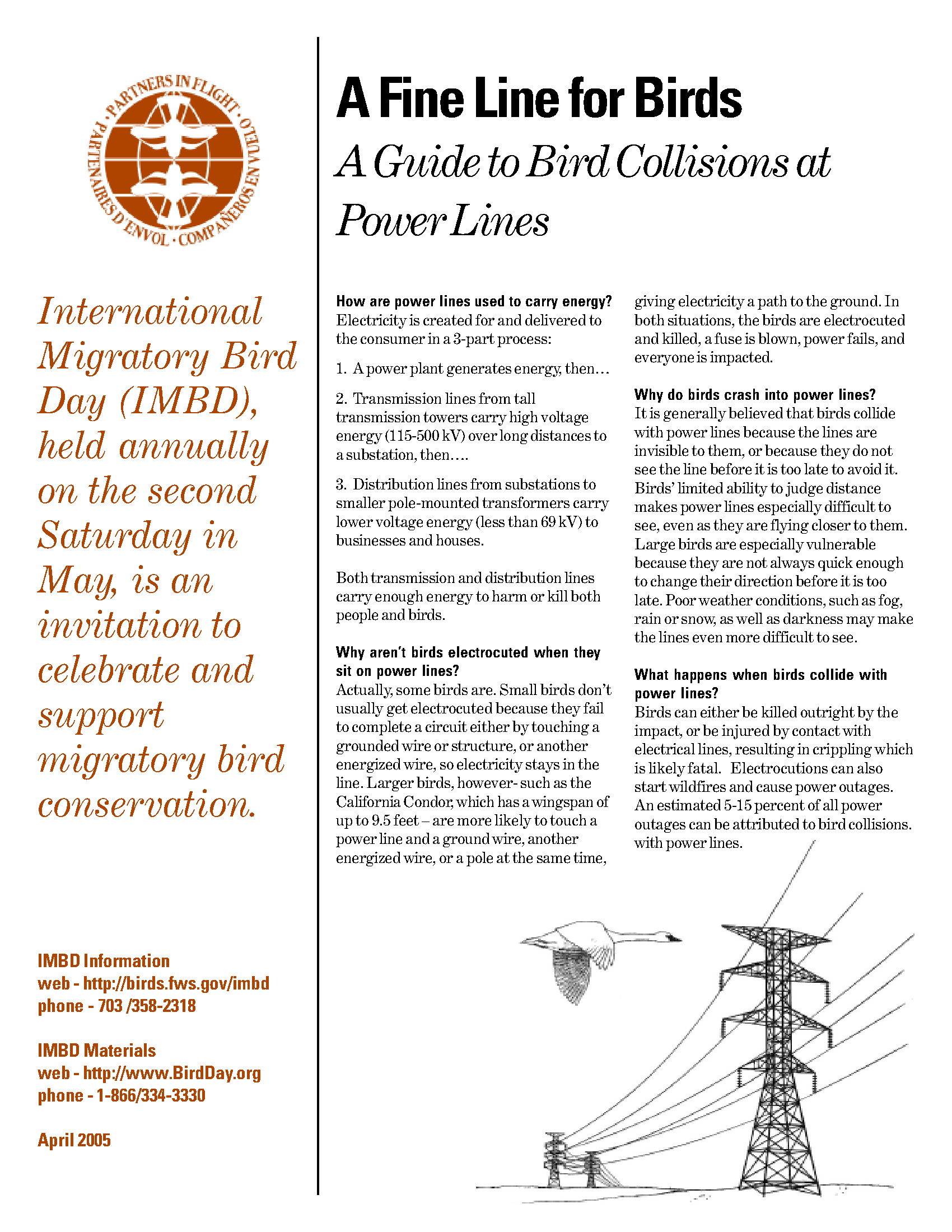 A fine line for birds: a guide to bird collisions at power
