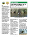 Evaluating the health of our National Wildlife Refuges: amphibian deformities