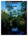 National wetlands inventory: A strategy for the 21st century