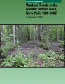 Wetland trends in the Greater Buffalo Area, New York: 1980-2002