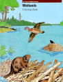 Wetlands Coloring Book
