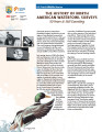 The history of North American waterfowl surveys 50 years & still counting