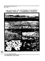 Ecology of southern California vernal pools: a community profile