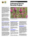 Endangered species recovery program