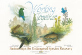 Working together: partnerships for endangered species recovery