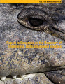 Report to Congress on the recovery of threatened and endangered species, fiscal years 2007-2008