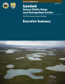 Izembek National Wildlife Refuge land exchange road corridor: draft environmental impact statement