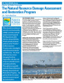 Natural resource damage assessment and restoration program: an introduction.