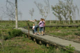 Refuge visitors on the boardwalk