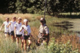 Girl scouts in frog survey