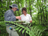The Nature Conservancy's Megan Gibney and Service botanist Carolyn Wells recording data
