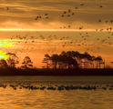 Image of sunset over water on a National Wildlife Refuge