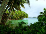 Strawn Island at Palmyra Atoll National Wildlife Refuge