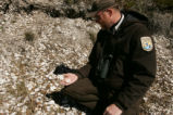 FWS Employee examines shell mound