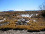 Flooding in Ash Meadows National Wildlife Refuge