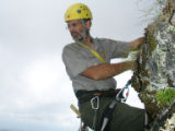 National Park Service employee Chris Ulrey on a rock face in search of Spreading avens.