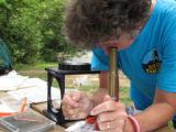 Workshop participant Donna Holcombe identifying macroinvertebrates