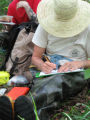 NC Wildlife Resources Commission bio tech Dottie Brown records data regarding the search for bog...