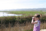 Two Year Old Birder at Humboldt Bay National Wildlife Refuge