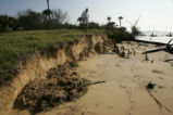Beach erosion on Bulls Island