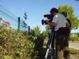 Filming Nutria in Urban Tigard, Oregon