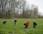 Volunteers Planting Trees on the Ankeny National Wildlife Refuge