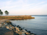 Eastern Neck National Wildlife Refuge