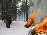 Pile burning at Bear Valley National Wildlife Refuge.