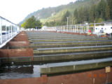 Raceways at Spring Creek National Fish Hatchery