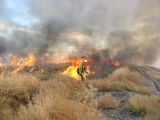 Leaseland burning at Tule Lake National Wildlife Refuge
