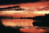 WO1800 Sunset, Seney National Wildlife Refuge