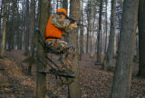 Hunter in Deer Stand