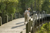 Scuppernong River Interpretive Boardwalk