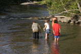Children Searching for Minnows
