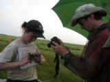 Forsythe intern and SCEP student conducting telemetry on Saltmarsh Sparrow
