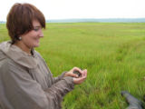 Forsythe intern releasing Saltmarsh Sparrow after banding it.