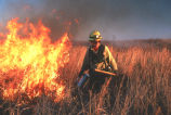 Prescribed burn at Texas refuge
