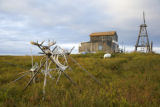 Wooden structure and caribou antlers