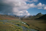 WO5176   Arctic National Wildlife Refuge