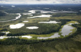 Aerial view of lakes and ponds surronded by forest at Tetlin National Wildlife Refuge