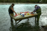 Fish filleting station