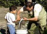 Fisherman teaches a child about fish handling