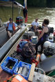 Scuba diving for freshwater mussel survey