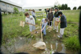 Children at the Science Olympiad using a net to capture pond life