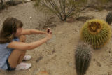Taking aim at the cactus