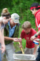 Macroinvertebrate identification