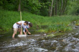 Students look for macroinvertebrates