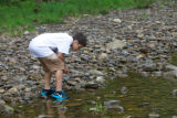 Teen boy looks for macroinvertebrates in the water