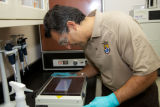 Service scientist conducts ELISA tests