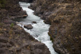 Salmon fishing in the rushing waters of the Klickitat River